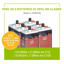 "12 Batteries 2v OPZs 420 ""Classic"""