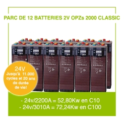 """12 Batteries 2v OPZs 2000 """"Classic"""""""
