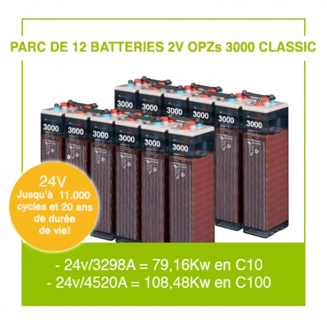 """12 Batteries 2v OPZs 3000 """"Classic"""