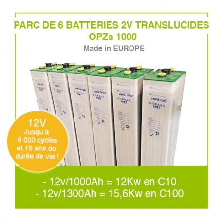 "Parc 6 Batteries 2v ""Translucides OPZs"" 1000"