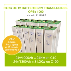 "Parc 12 Batteries 2v ""Translucides OPZs"" 1000"