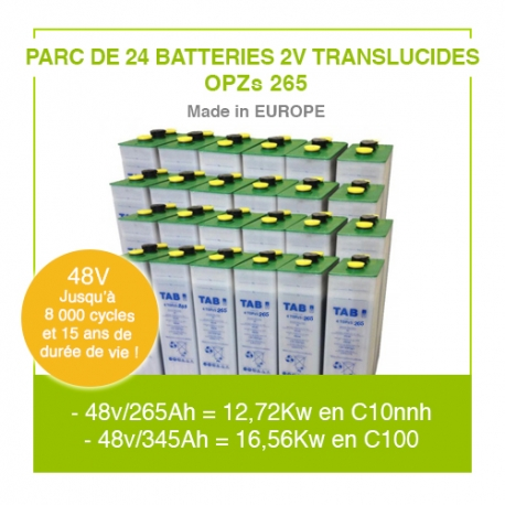 "Parc 24 Batteries 2v ""Translucides  OPZs"" 265"